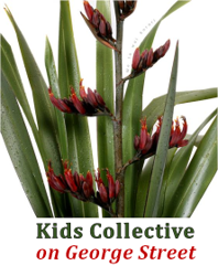 Kids Collective on George Street
